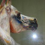 pastels&schilderijen - Paard4